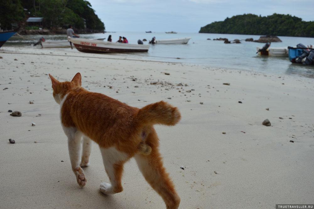 Ipoih beach