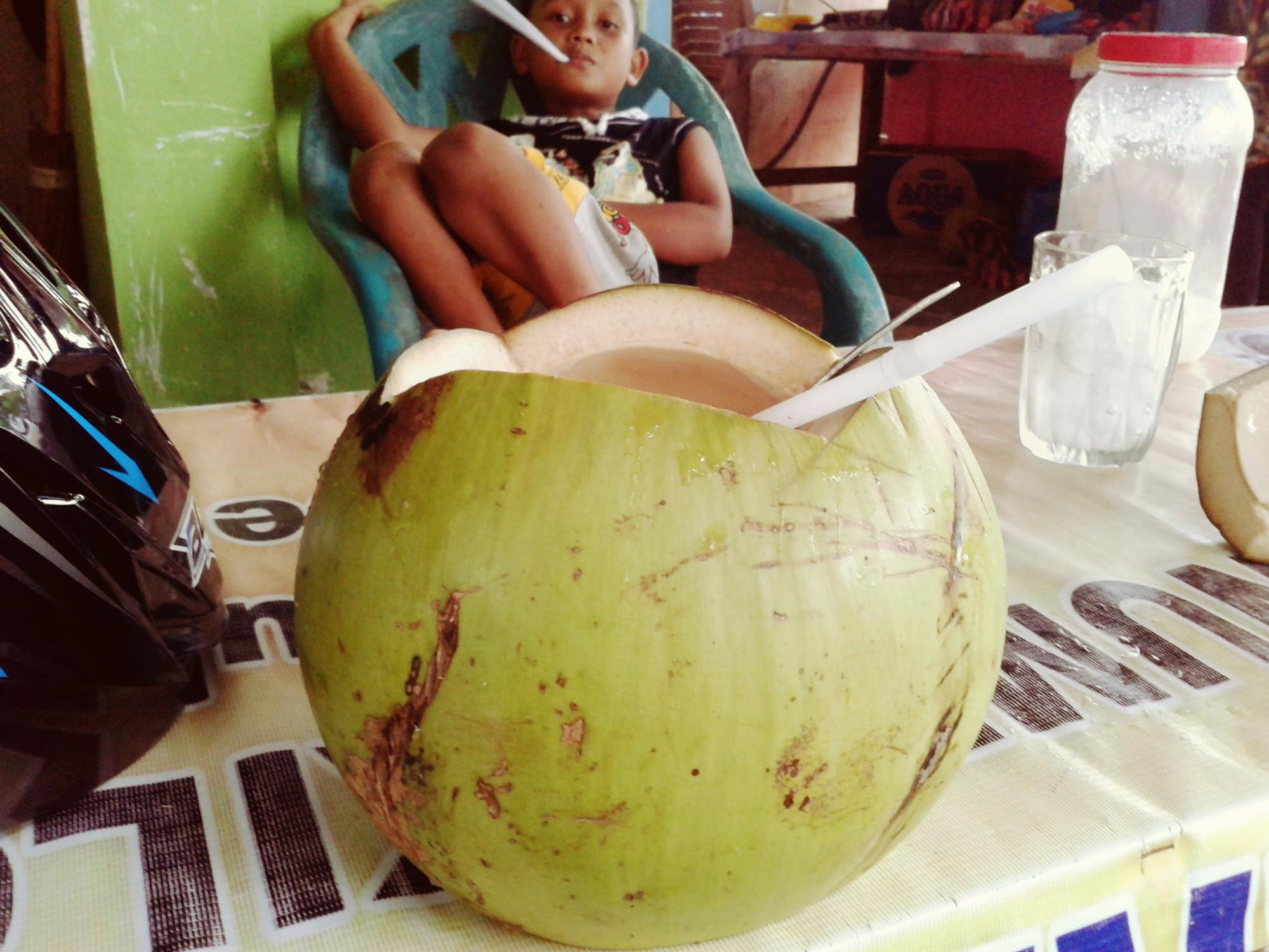 кокос на суматре