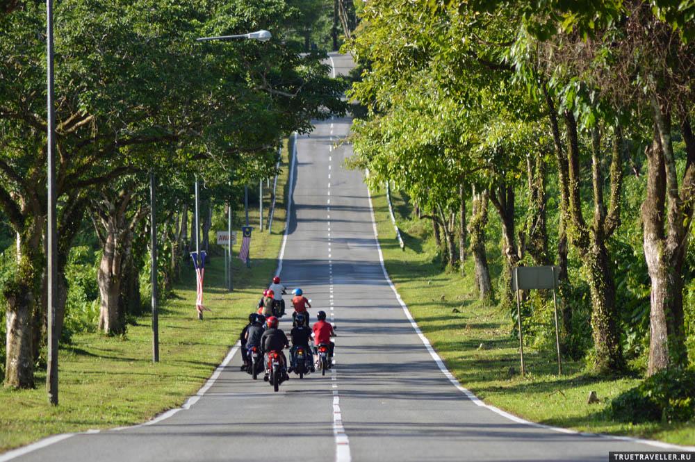 Сцена на дороге. Саравак, Борнео.